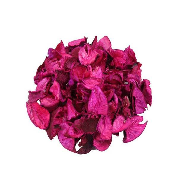 گل خشک کوه شاپ کد D3018- A003
